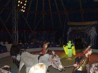 Zirkus2016-002